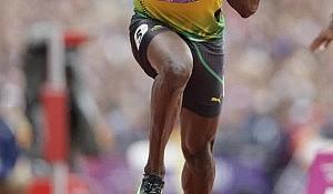 Bolt knees